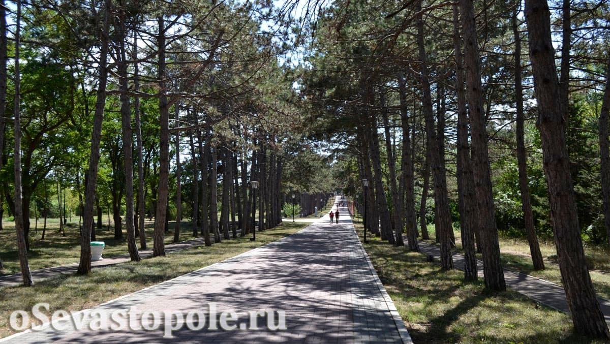 Аллея на Сапун-горе в Севастополе