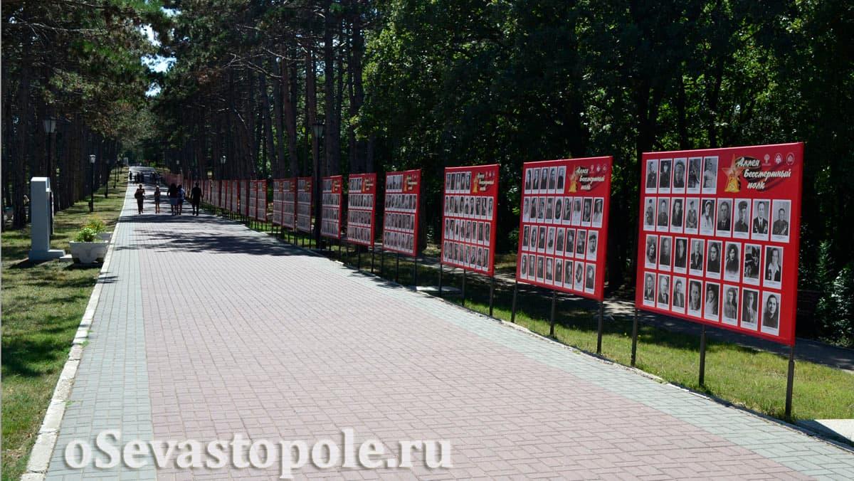Стенды Бессмертного полка на Сапун-горе в Севастополе