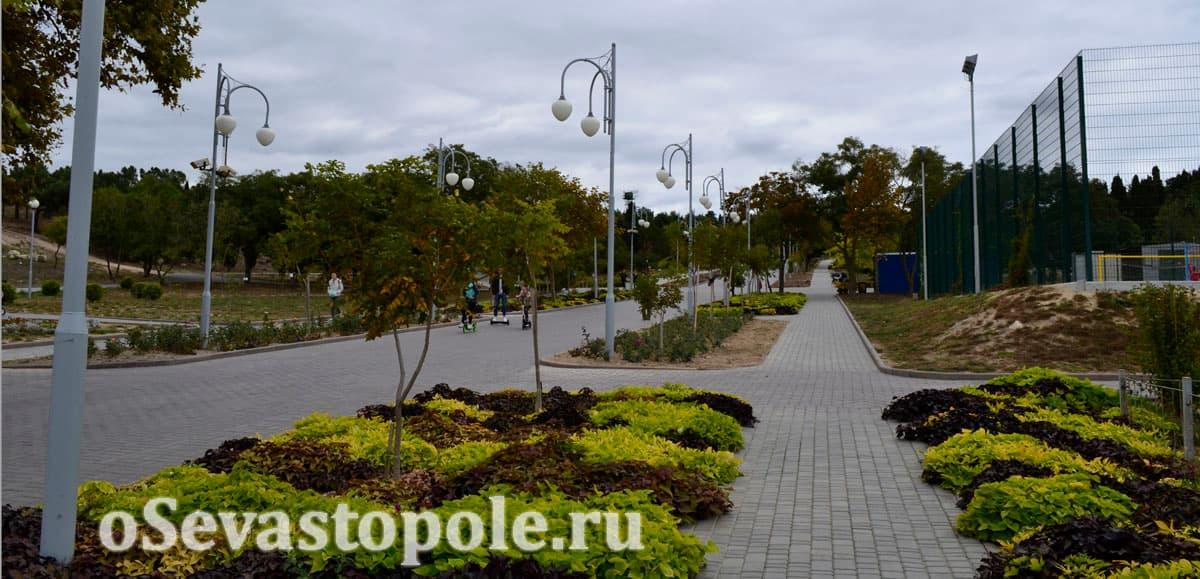 Вид на парк Ахматовой с пляжа Солнечный