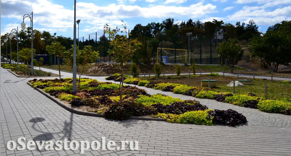 Цветущие клумбы в парке Ахматовой