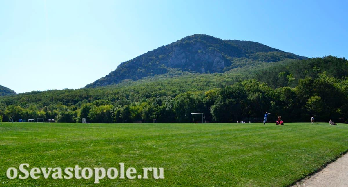 Футбольное поле на Тороповой даче