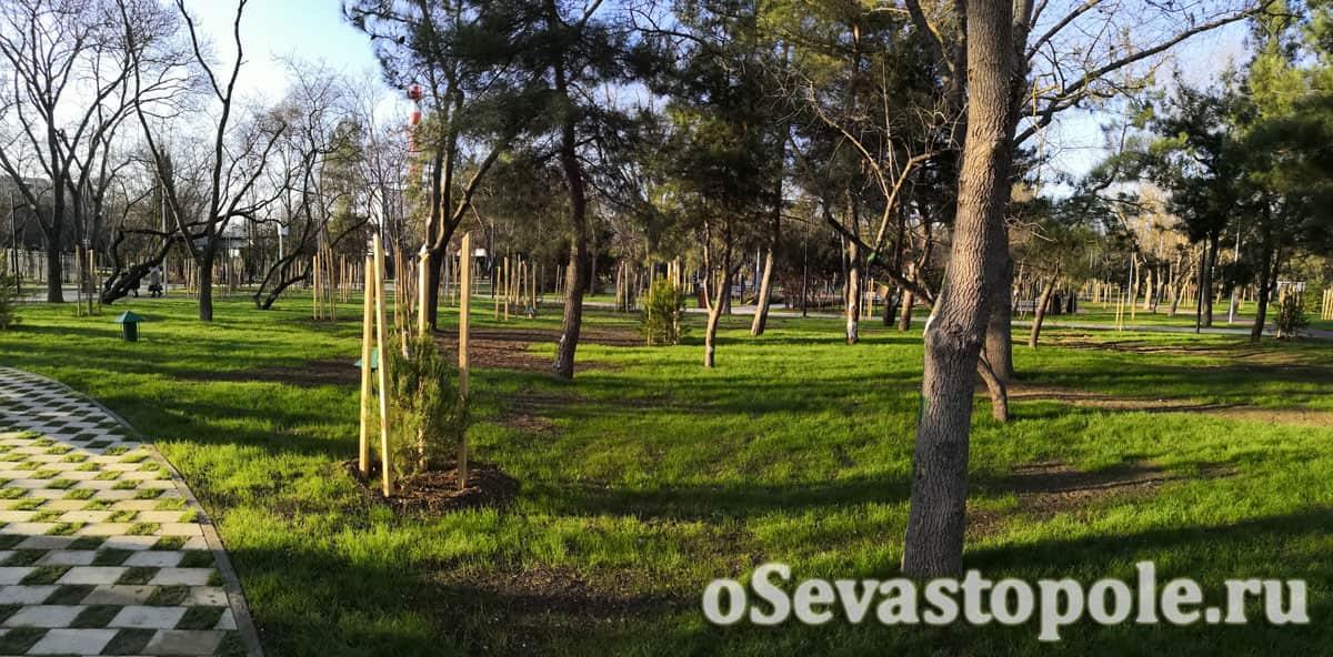 Газоны в парке 60-летия СССР