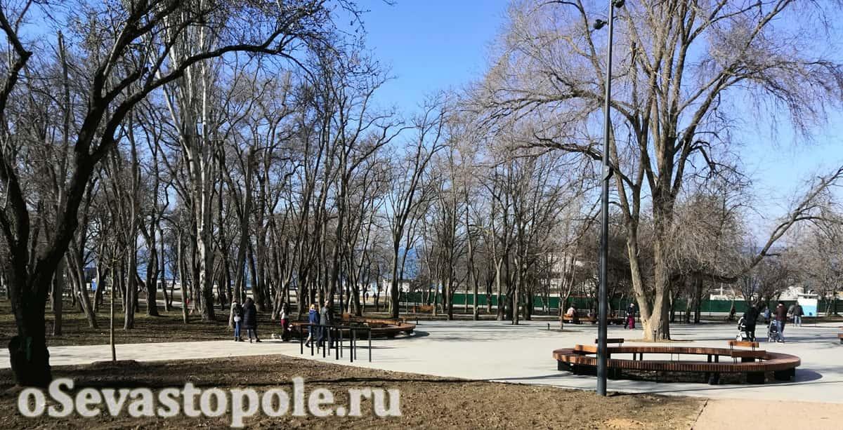 Деревья в парке Учкуевка Севастополь