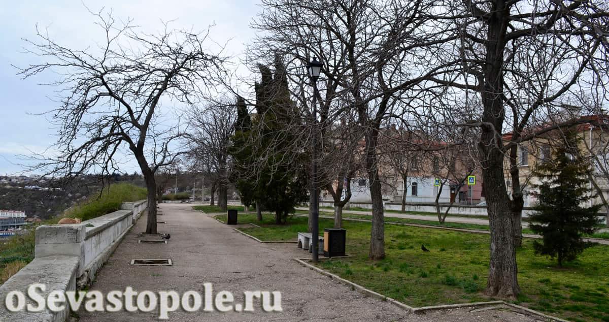 сквер Бузина Севастополь