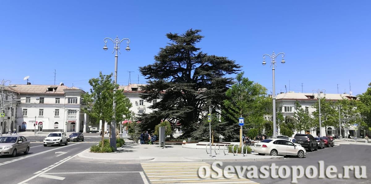 Площадь Лазарева в Севастополе фотографии