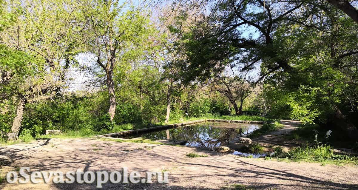 Прямоугольный пруд на Максимовой даче