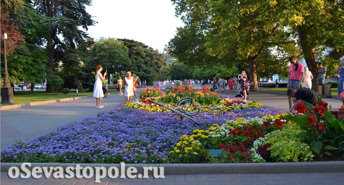 Цветы на Приморском бульваре в Севастополе