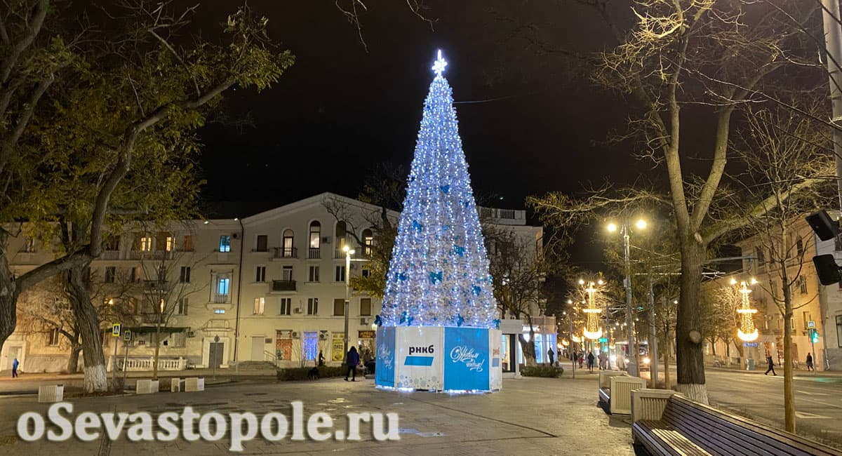 Елка на площади Ушакова в Севастополе