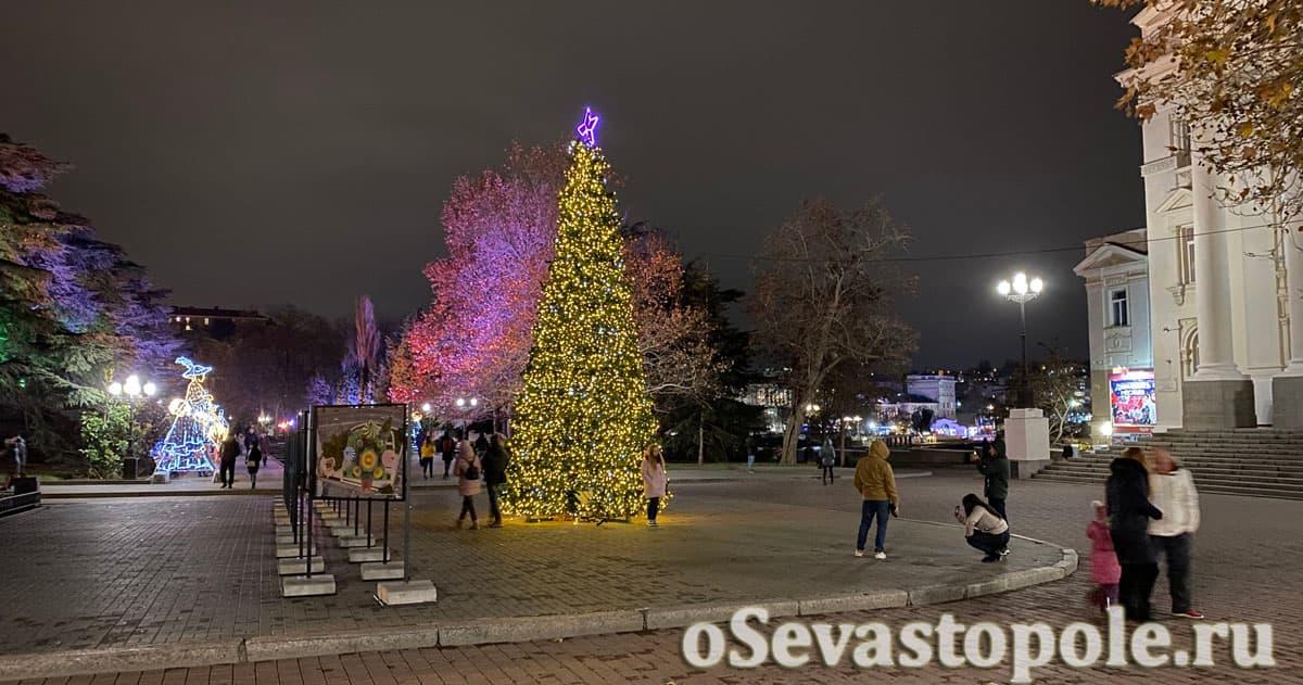 Елка в Севастополе возле Дворца детского и юношеского творчества